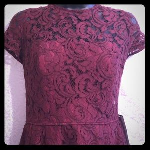 NWT J Crew fit and flare Alisa leavers lace dress